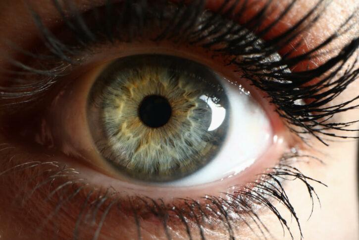 Closeup of retina